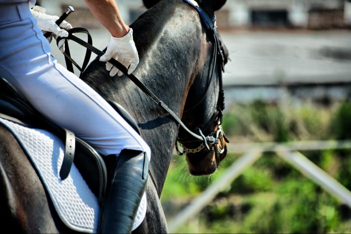 Forma rehabilitacji psycho-ruchowej, do której stosuje się konia jest świetną metodą rozbudzania samoświadomości anorektyków