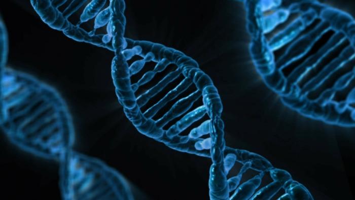 Uznaje się, że czynniki genetyczne mogą być jednym z determinantów pojawienia się depresji, ale nie jedynym