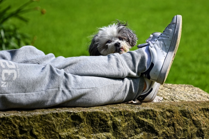 Zjawisko drętwienia stóp i uczucia mrowienia w nogach określa się mianem parestezji.